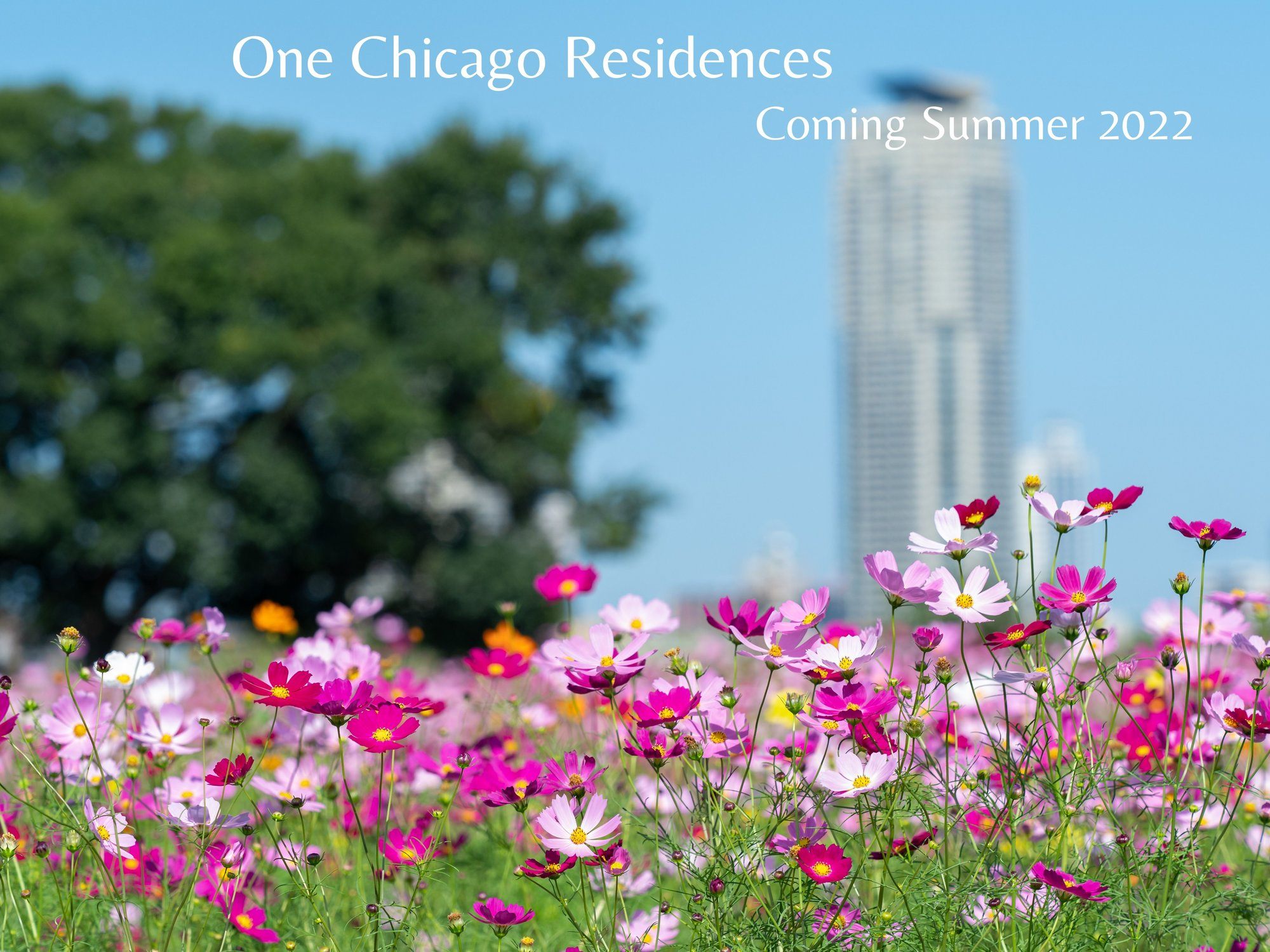OneChicagoResidences